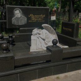 памятник А.Ю. Яглинского